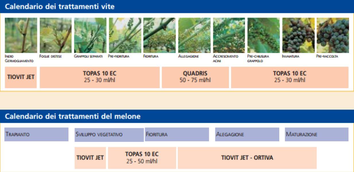 calendario-trattamenti-TOPAS-10-EC-fungicida