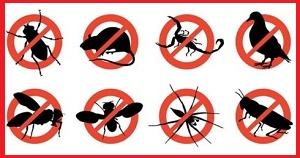insetticidi-civili