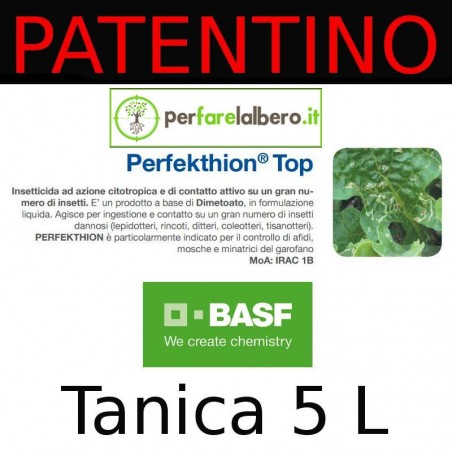 PERFEKTHION TOP Basf insetticida Dimetoato