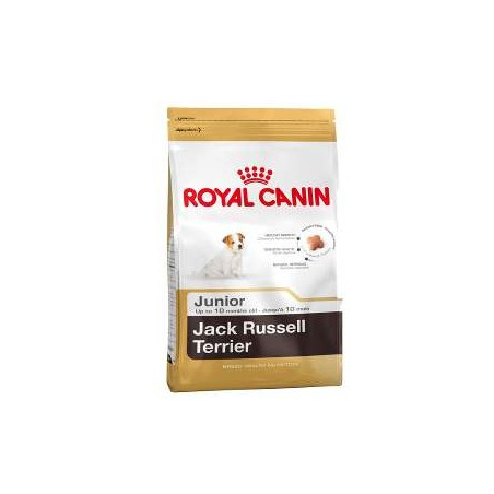 Royal Canin breed Jack Russell Terrier junior