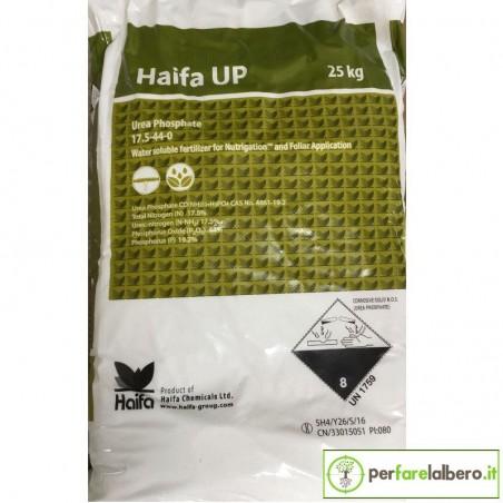 HAIFA UP Urea Fosfato 17,5-44-0 concime fertirrigazione 25 kg