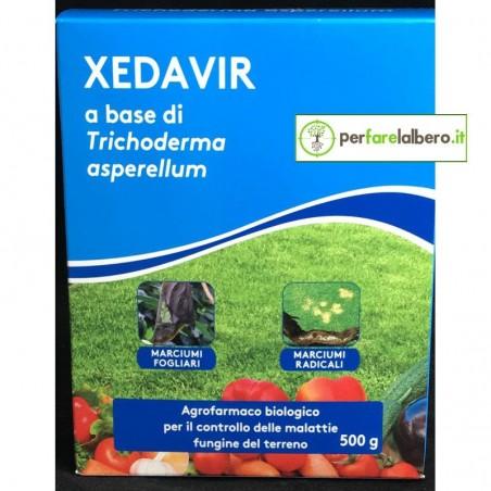 XEDAVIR Fungicida bio tappeto erboso 500 g Trichoderma Asperellum