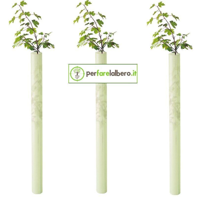 Tubex Fruitwrap protezione alberi da frutto