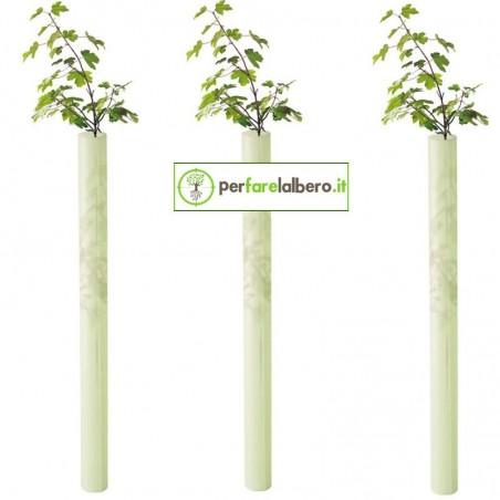 Shelter Tubex Fruitwrap protezione alberi da frutto