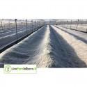 Ortoclima Tessuto Non Tessuto Protezione colture dal gelo