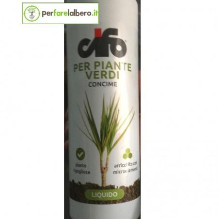 Concime liquido per piante verdi CIFO