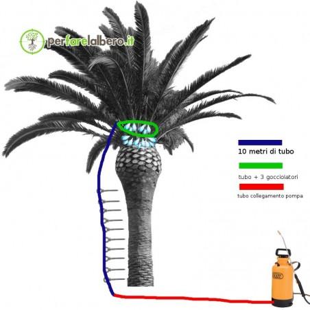 KIT collegamento pompa per trattamento Palme Punteruolo Rosso