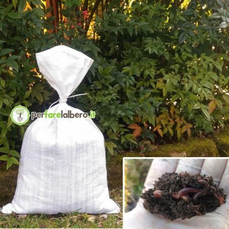 Humus di lombrico Ammendante Naturale Fertilizzante Organico