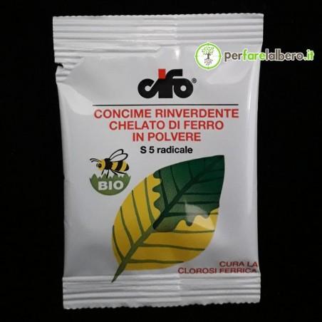 Concime Rinverdente Chelato di ferro in polvere CIFO 10 g