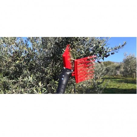 Abbacchiatore per olive Olivance Evo 2-3