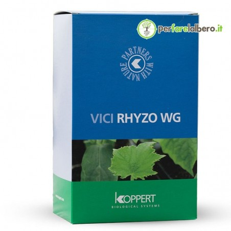 Vici Rhyzoteam WG Koppert Trichoderma Micorrize Batteri della rizosfera