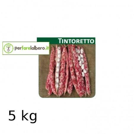 Sementi Fagiolo da sgrano nano TINTORETTO - 5 kg