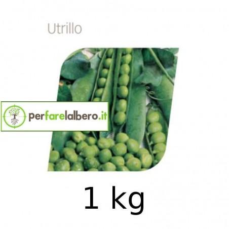 Semi Pisello UTRILLO - 1 kg