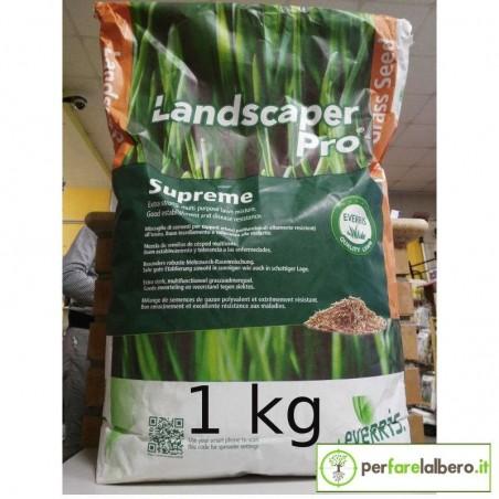 Landscaper Pro Supreme sementi per tappeti erbosi - 1 kg