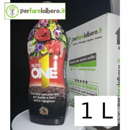 NUTRI One liquido Concime concentrato per piante e fiori - 1 Litro