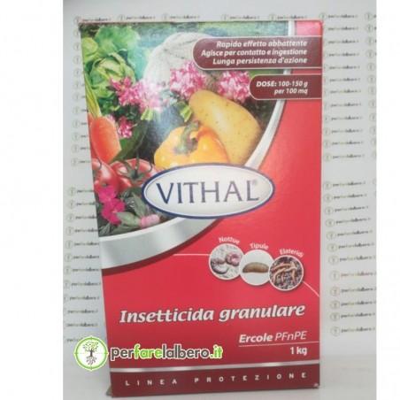 Ercole PFnPE insetticida granulare per la protezione degli apparati radicali di colture erbacee e orticole