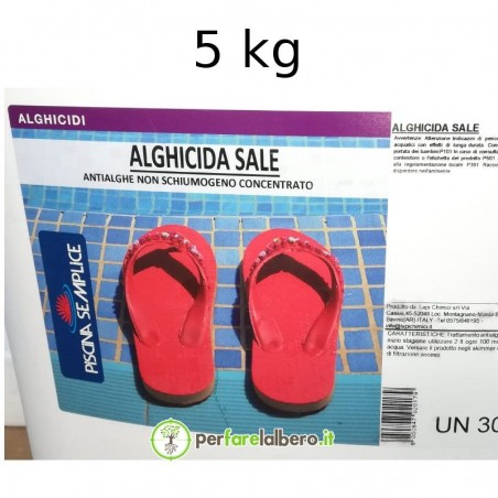 Alghicida Sale Antialghe per piscina non schiumogeno concentrato