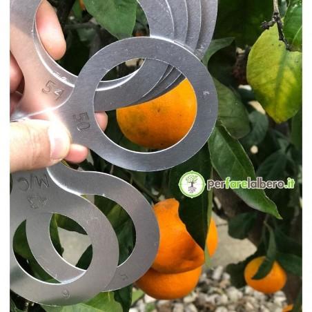 Calibro mandarini 8 anelli 43-78mm 53339 Turoni