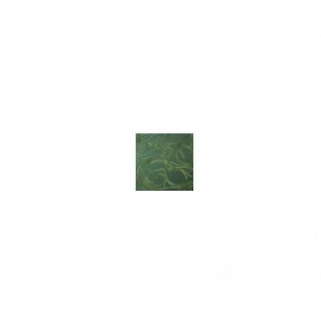 B-Green Nematodi Heterorhabditis bacteriophora contro larve di oziorrinco (tipo Larvanem)