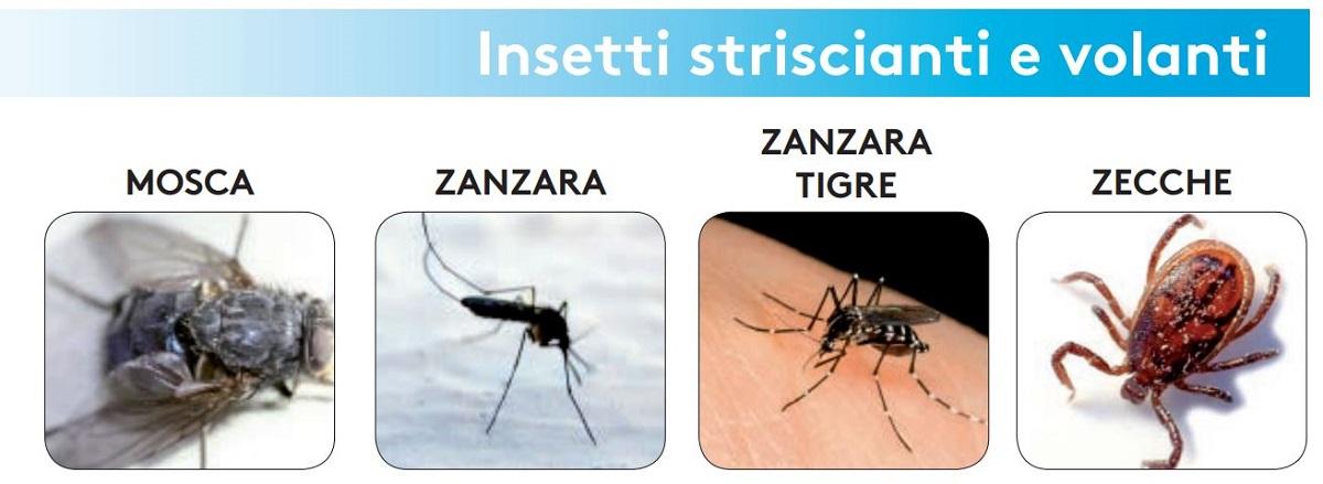 foval ce insetticida zanzara tigre zecche mosche