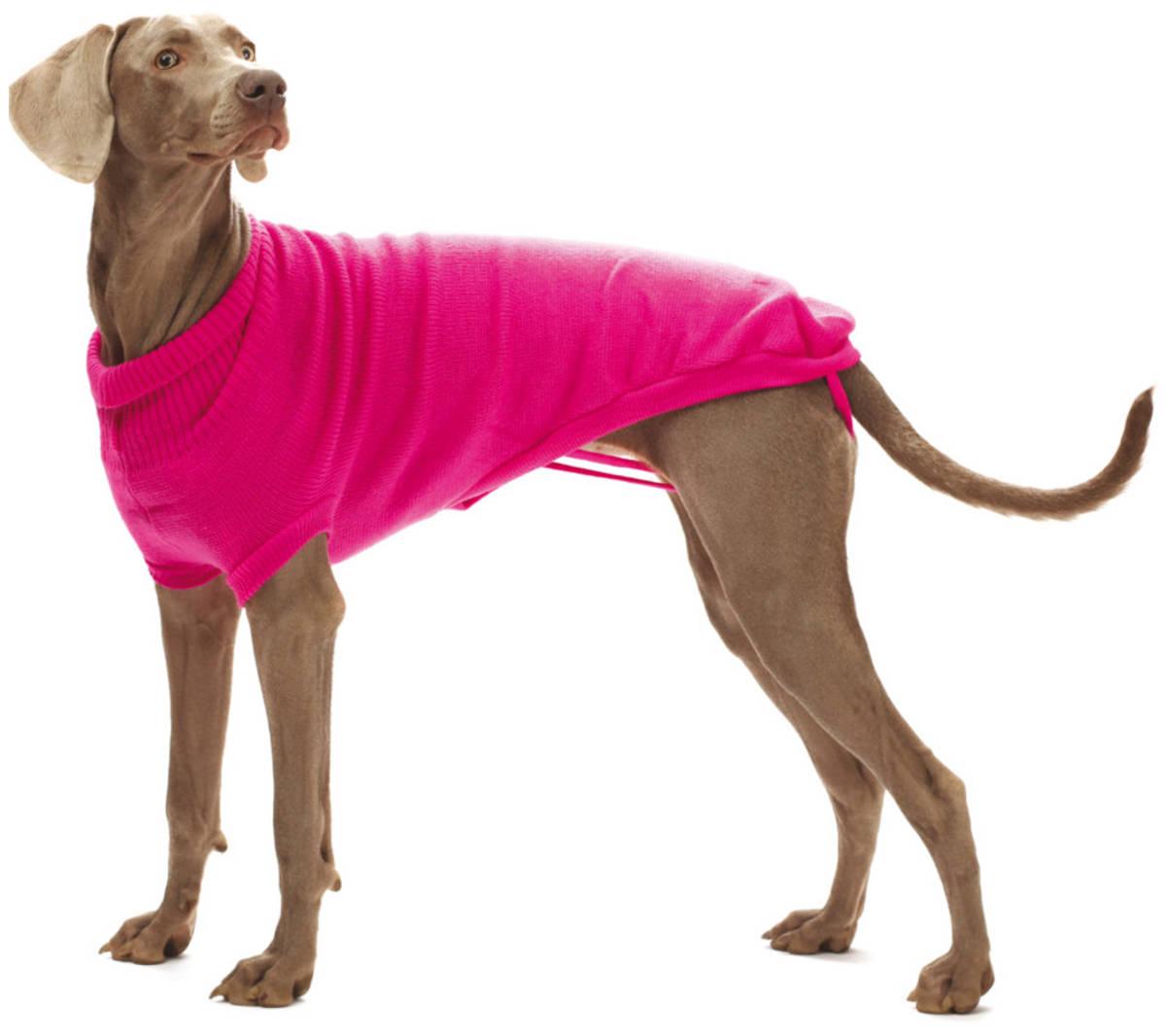 maglioncino per cani pullover croci valencia