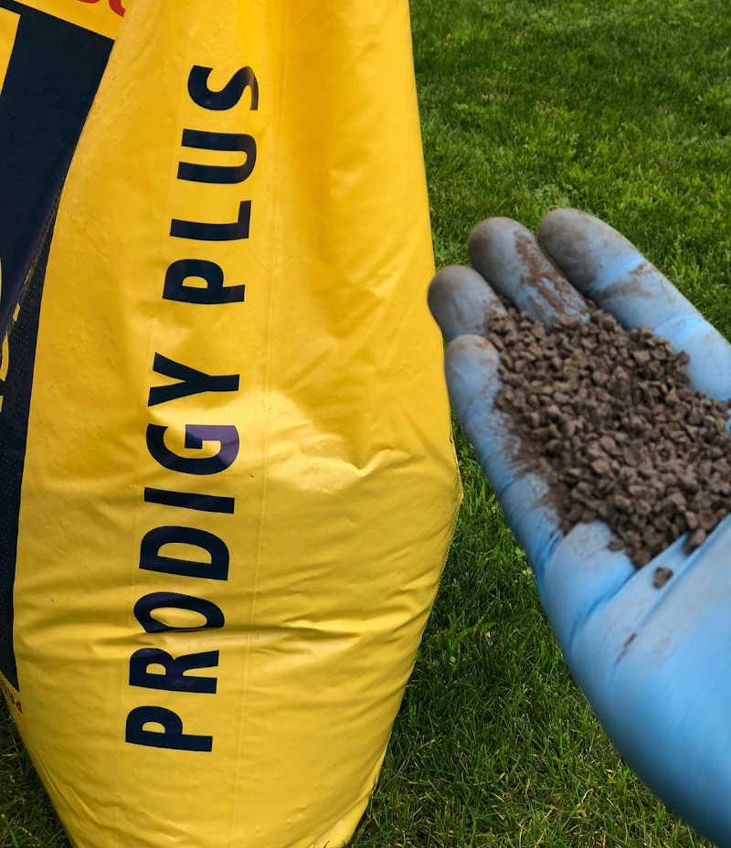 prodigy plus biogard concime organico pellettato